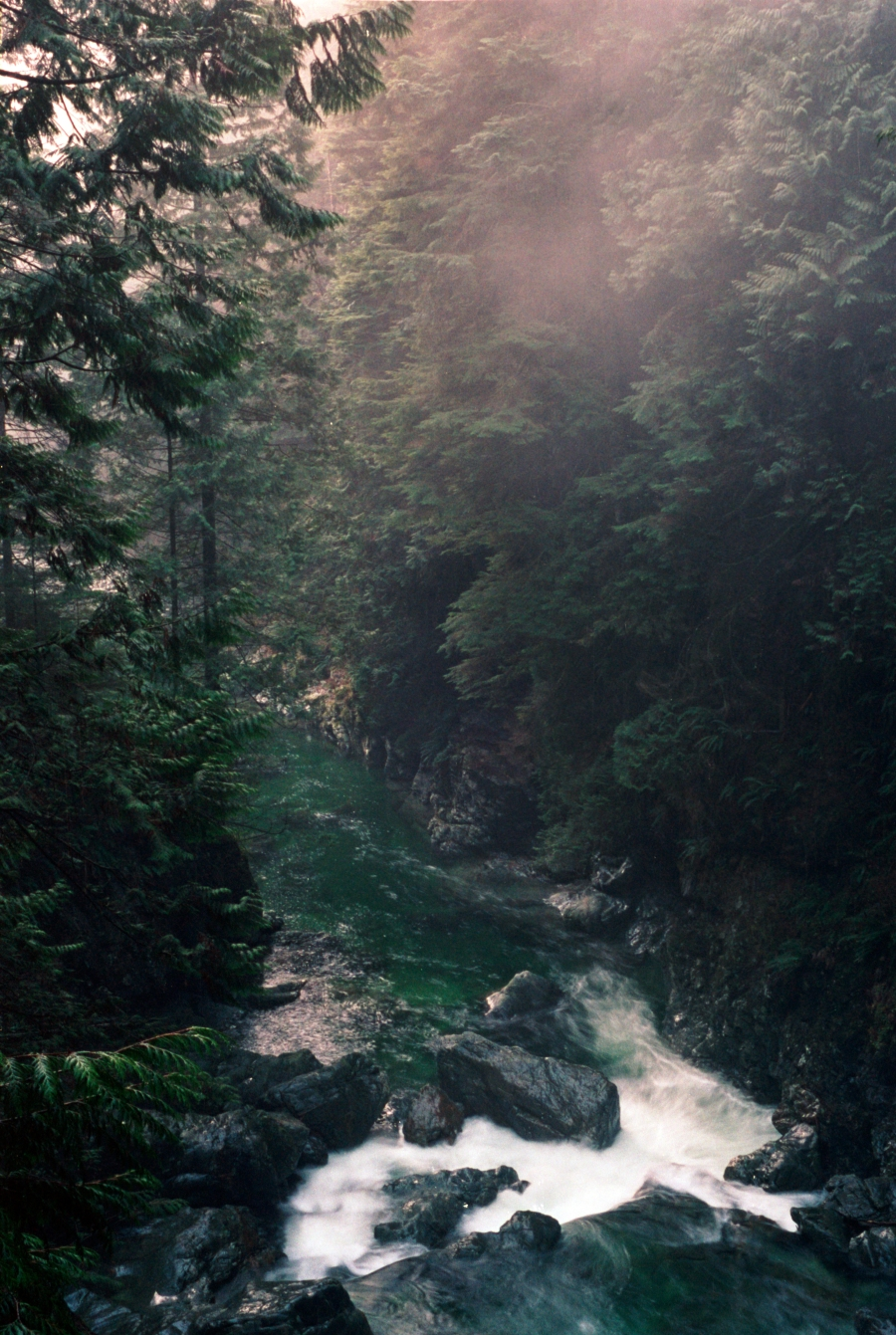An Ode to The Off-Season: Lynn Canyon I